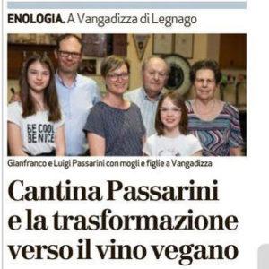 articolo-arena-featured